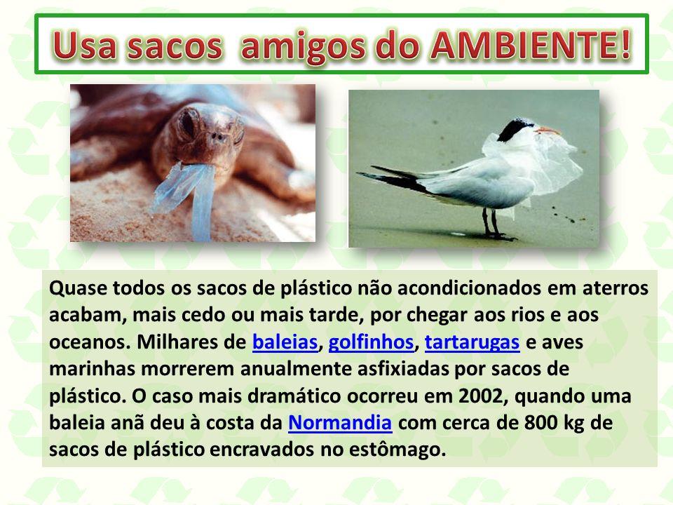 Quase todos os sacos de plástico não acondicionados em aterros acabam, mais cedo ou mais tarde, por chegar aos rios e aos oceanos. Milhares de baleias