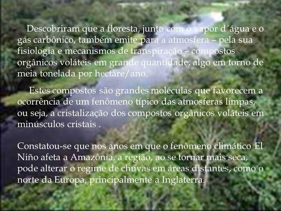 Constatou-se que nos anos em que o fenômeno climático El Niño afeta a Amazônia, a região, ao se tornar mais seca, pode alterar o regime de chuvas em á