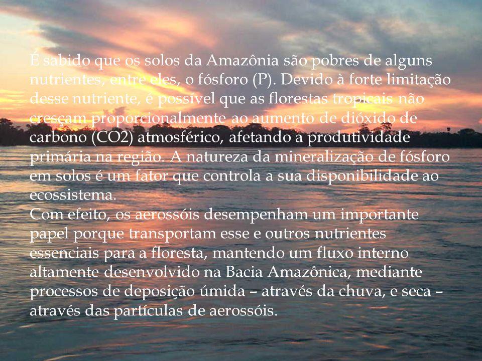 É sabido que os solos da Amazônia são pobres de alguns nutrientes, entre eles, o fósforo (P). Devido à forte limitação desse nutriente, é possível que