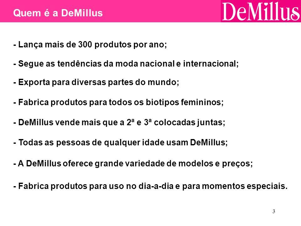 3 - Segue as tendências da moda nacional e internacional; - Exporta para diversas partes do mundo; - Fabrica produtos para todos os biotipos femininos