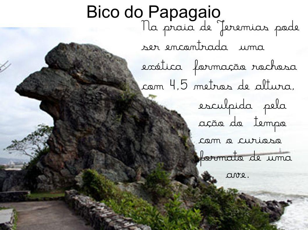 (Bruna e Alice) Está localizada no centro histórico de Itajaí. É o monumento mais significativo da história itajai- ense; a atual construção resulta d
