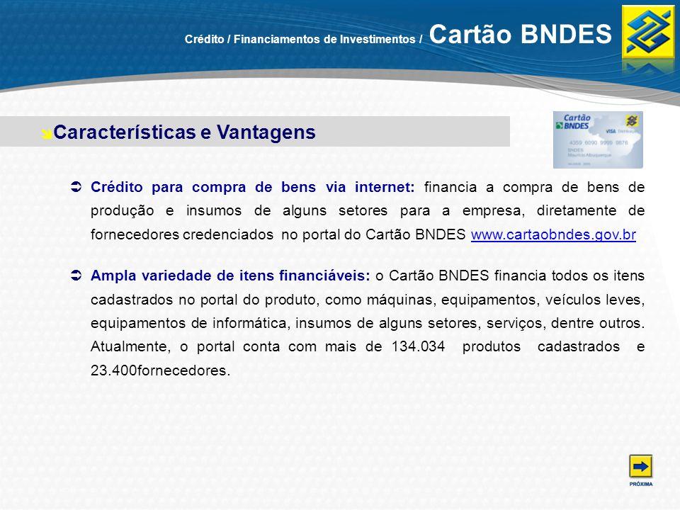 Crédito / Financiamentos de Investimentos / Cartão BNDES Crédito para compra de bens via internet: financia a compra de bens de produção e insumos de