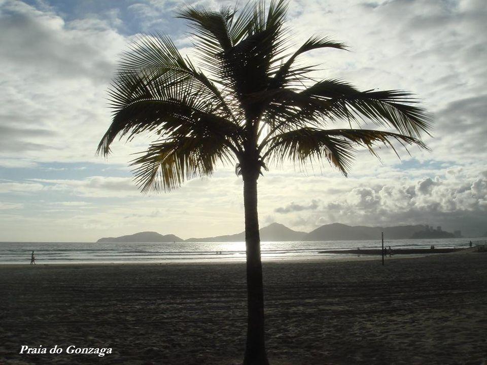 Orla de Santos vista da Ponta da Praia