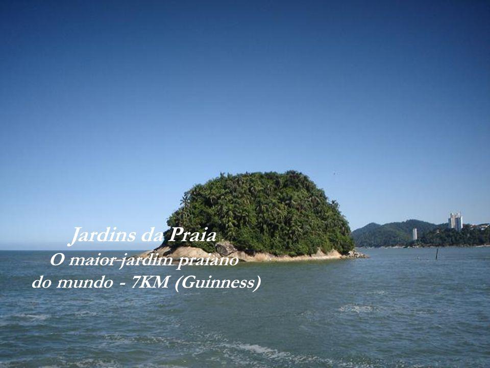 Ilha de Urubuqueçaba Praia do José Menino