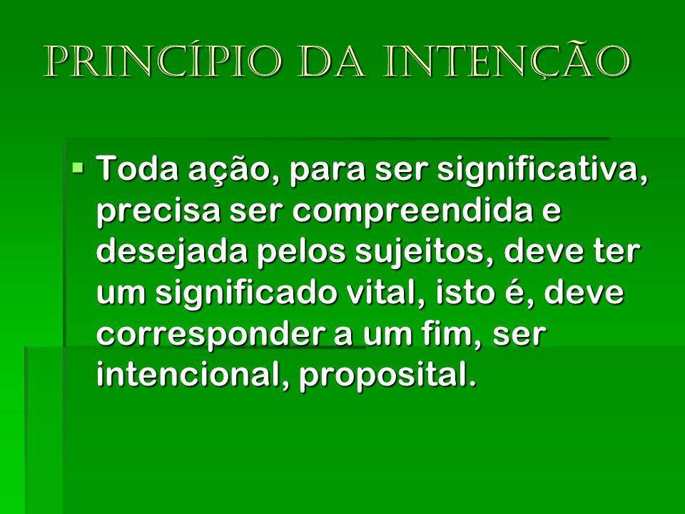 Princípio da intenção Toda ação, para ser significativa, precisa ser compreendida e desejada pelos sujeitos, deve ter um significado vital, isto é, de