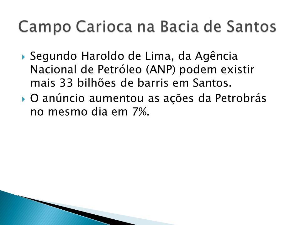 Segundo Haroldo de Lima, da Agência Nacional de Petróleo (ANP) podem existir mais 33 bilhões de barris em Santos. O anúncio aumentou as ações da Petro