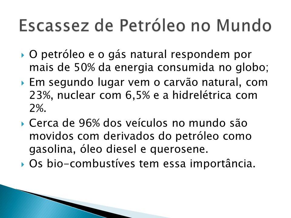 O petróleo e o gás natural respondem por mais de 50% da energia consumida no globo; Em segundo lugar vem o carvão natural, com 23%, nuclear com 6,5% e