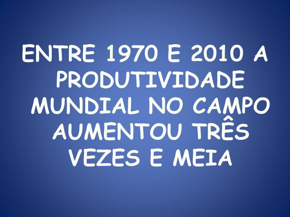 ENTRE 1970 E 2010 A PRODUTIVIDADE MUNDIAL NO CAMPO AUMENTOU TRÊS VEZES E MEIA