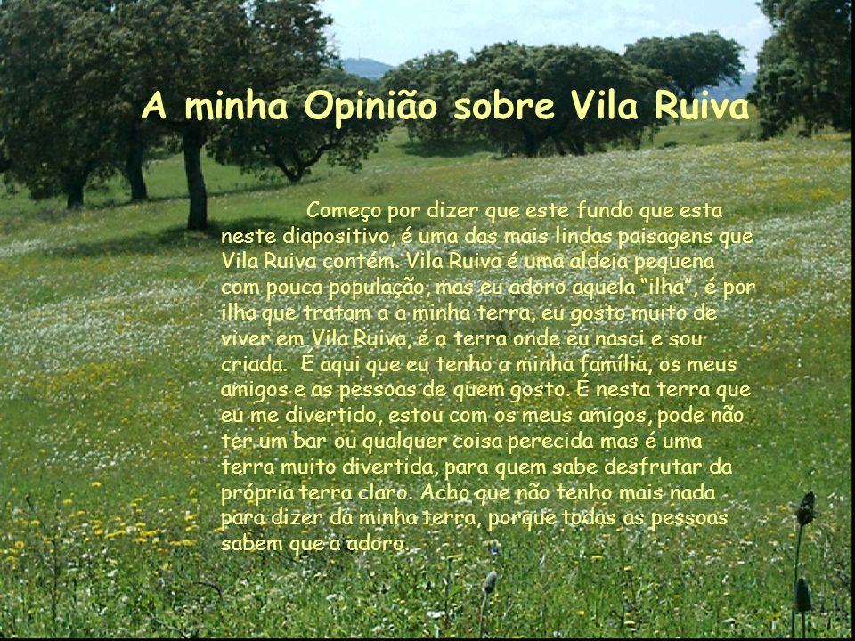 A minha Opinião sobre Vila Ruiva Começo por dizer que este fundo que esta neste diapositivo, é uma das mais lindas paisagens que Vila Ruiva contém.