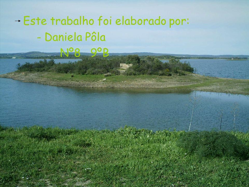 Este trabalho foi elaborado por: - Daniela Pôla Nº8 9ºB