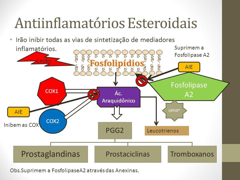 Antiinflamatórios Esteroidais Irão inibir todas as vias de sintetização de mediadores inflamatórios.