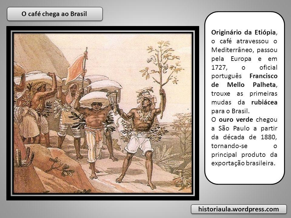 Originário da Etiópia, o café atravessou o Mediterrâneo, passou pela Europa e em 1727, o oficial português Francisco de Mello Palheta, trouxe as prime