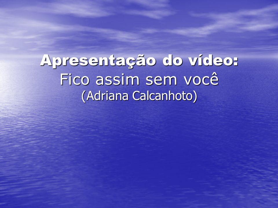 Apresentação do vídeo: Fico assim sem você ( Adriana Calcanhoto)