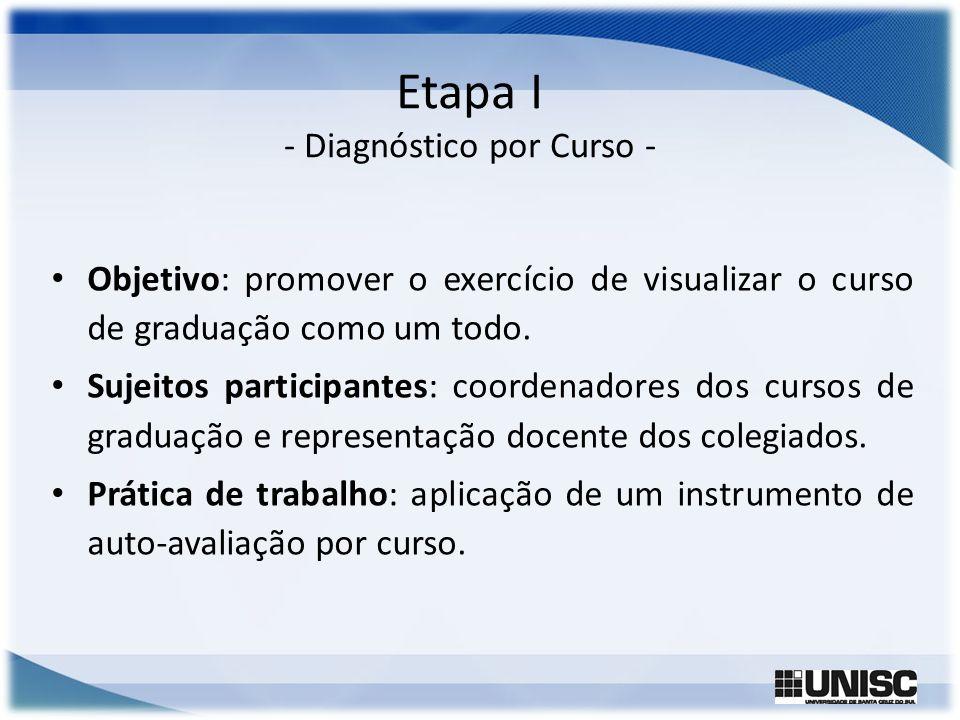 Etapa I - Diagnóstico por Curso - Objetivo: promover o exercício de visualizar o curso de graduação como um todo. Sujeitos participantes: coordenadore