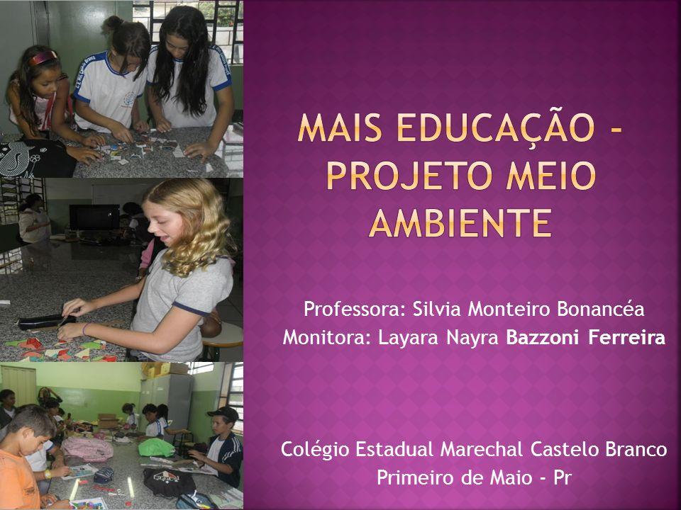 Professora: Silvia Monteiro Bonancéa Monitora: Layara Nayra Bazzoni Ferreira Colégio Estadual Marechal Castelo Branco Primeiro de Maio - Pr