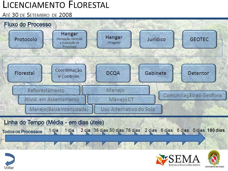 L ICENCIAMENTO F LORESTAL A TÉ 30 DE S ETEMBRO DE 2008 Protocolo Hangar (Recepção, Controle e Expedição de Processos) Hangar (Triagem) JurídicoGEOTEC