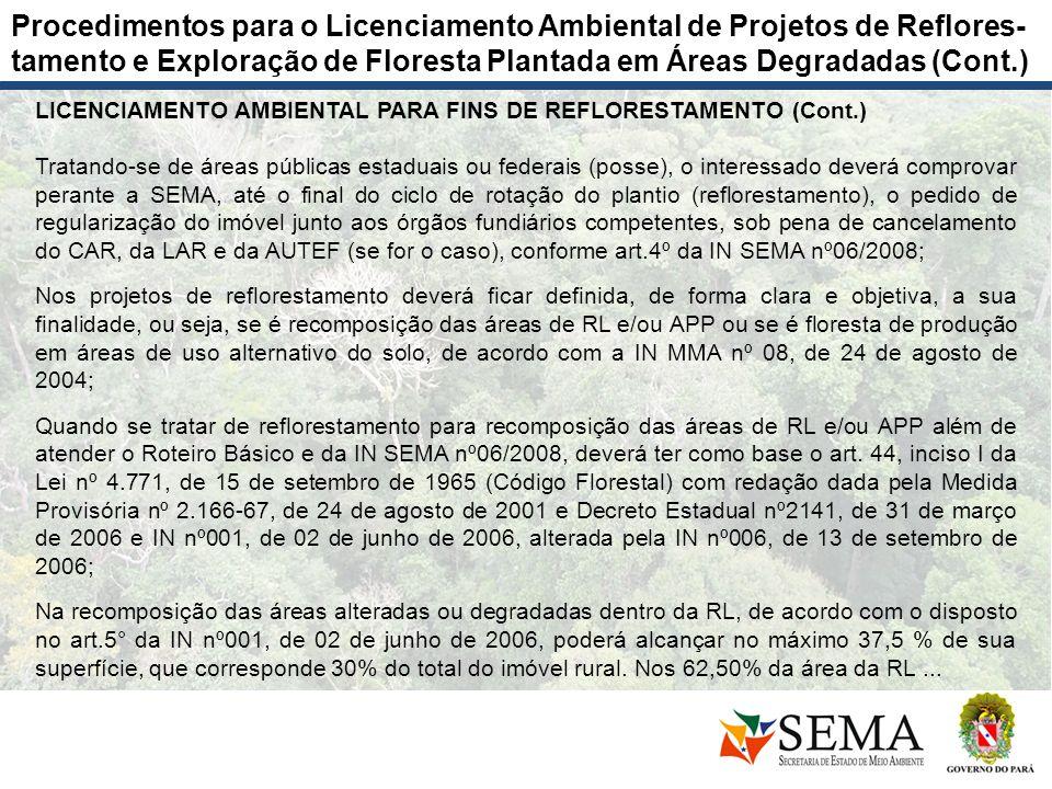 LICENCIAMENTO AMBIENTAL PARA FINS DE REFLORESTAMENTO (Cont.) Tratando-se de áreas públicas estaduais ou federais (posse), o interessado deverá comprov