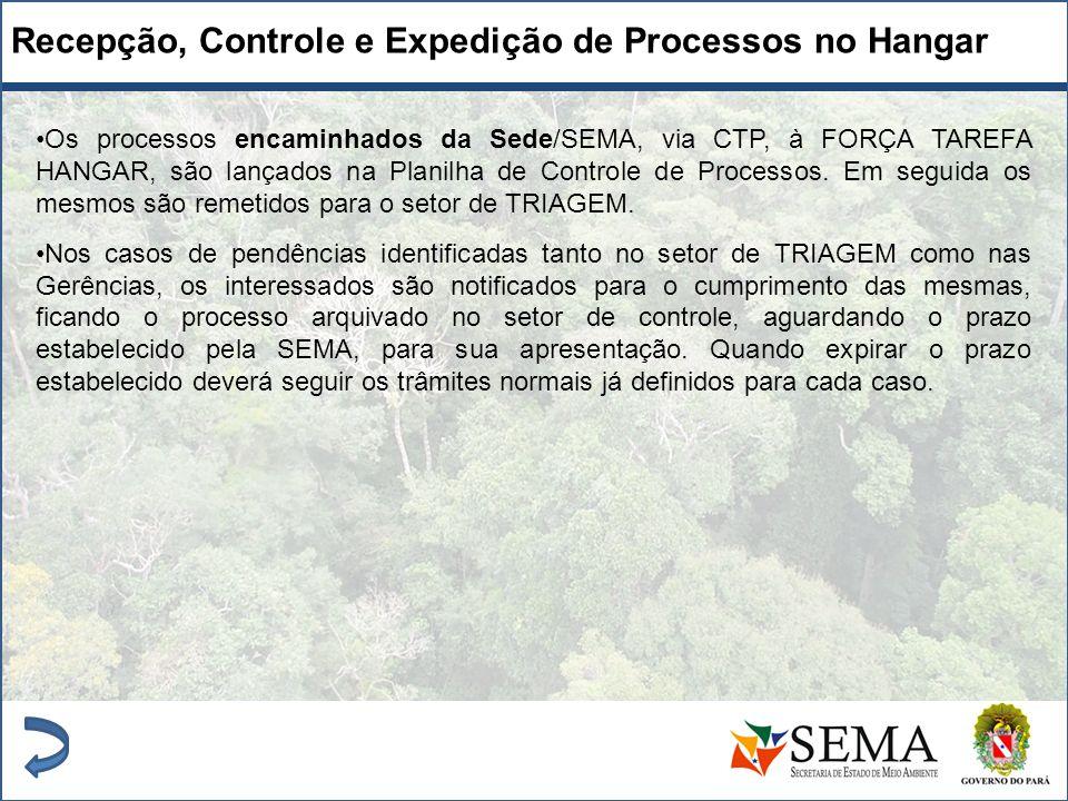 Recepção, Controle e Expedição de Processos no Hangar Os processos encaminhados da Sede/SEMA, via CTP, à FORÇA TAREFA HANGAR, são lançados na Planilha
