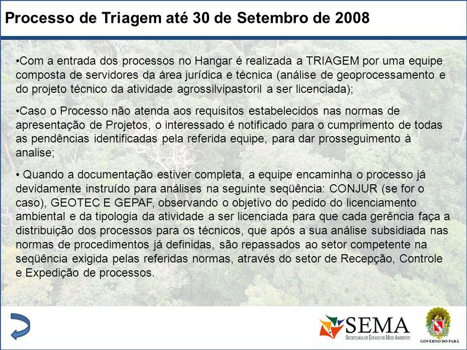 Processo de Triagem até 30 de Setembro de 2008 Com a entrada dos processos no Hangar é realizada a TRIAGEM por uma equipe composta de servidores da ár