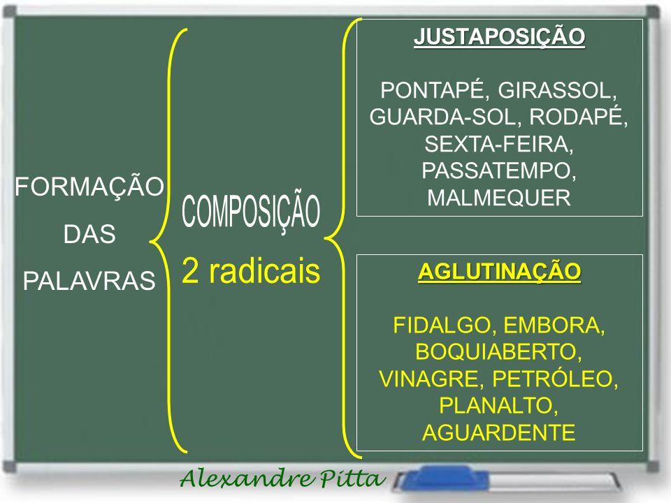 Alexandre Pitta FORMAÇÃO DAS PALAVRAS JUSTAPOSIÇÃO PONTAPÉ, GIRASSOL, GUARDA-SOL, RODAPÉ, SEXTA-FEIRA, PASSATEMPO, MALMEQUER AGLUTINAÇÃO FIDALGO, EMBORA, BOQUIABERTO, VINAGRE, PETRÓLEO, PLANALTO, AGUARDENTE