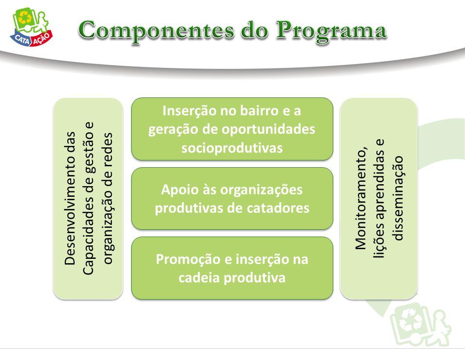 Desenvolvimento das Capacidades de gestão e organização de redes Desenvolvimento das Capacidades de gestão e organização de redes Inserção no bairro e