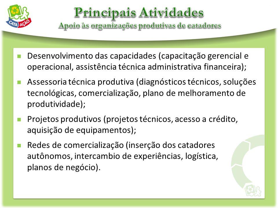 Desenvolvimento das capacidades (capacitação gerencial e operacional, assistência técnica administrativa financeira); Assessoria técnica produtiva (di