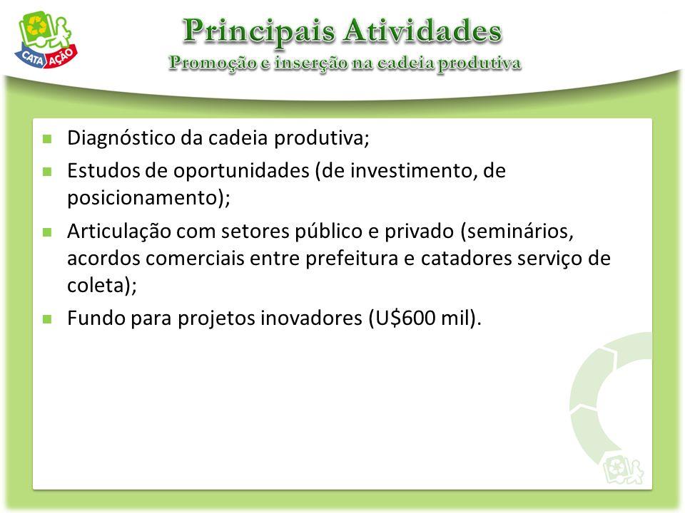 Diagnóstico da cadeia produtiva; Estudos de oportunidades (de investimento, de posicionamento); Articulação com setores público e privado (seminários,