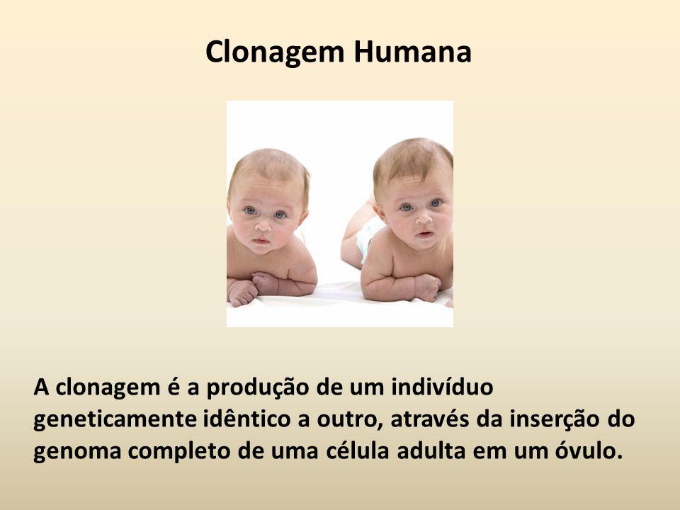 Clonagem Humana Chama-se clonagem ao processo pelo qual se produzem, a partir de um só organismo, vários indivíduos geneticamente iguais ao primeiro.