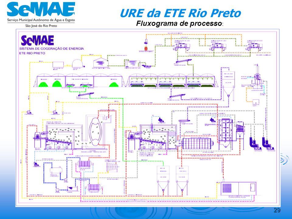 28 Resíduos Lenhosos Urbanos Período2012-20142015-20192020-20242025-20292030-2034 Incineração em caldeira Energia gerada (kWh)/d 4786,239683,679633,25