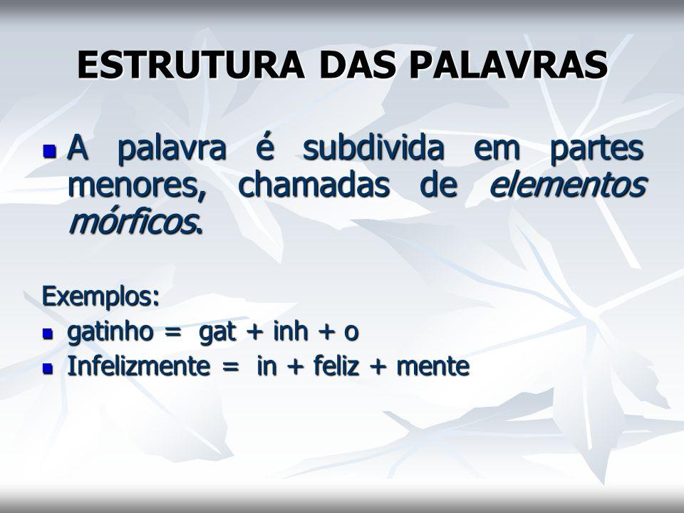 ESTRUTURA DAS PALAVRAS A palavra é subdivida em partes menores, chamadas de elementos mórficos. A palavra é subdivida em partes menores, chamadas de e