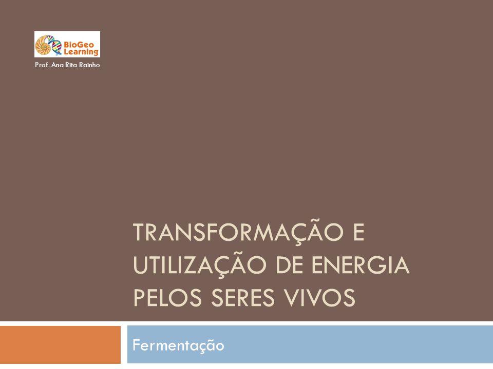 TRANSFORMAÇÃO E UTILIZAÇÃO DE ENERGIA PELOS SERES VIVOS Fermentação Prof. Ana Rita Rainho