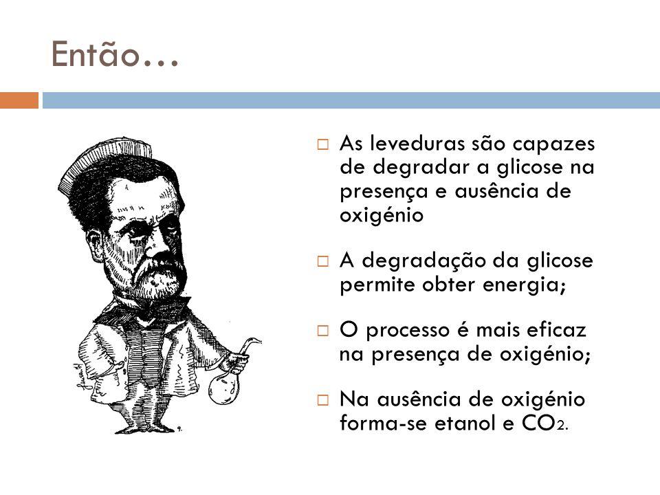 Então… As leveduras são capazes de degradar a glicose na presença e ausência de oxigénio A degradação da glicose permite obter energia; O processo é mais eficaz na presença de oxigénio; Na ausência de oxigénio forma-se etanol e CO 2.