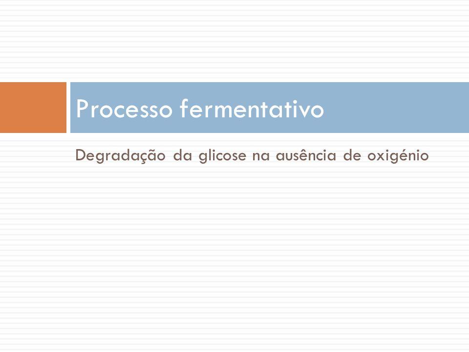 Degradação da glicose na ausência de oxigénio Processo fermentativo