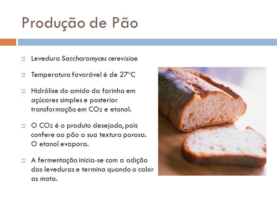 Produção de Pão Levedura Saccharomyces cerevisiae Temperatura favorável é de 27ºC Hidrólise do amido da farinha em açúcares simples e posterior transformação em CO 2 e etanol.