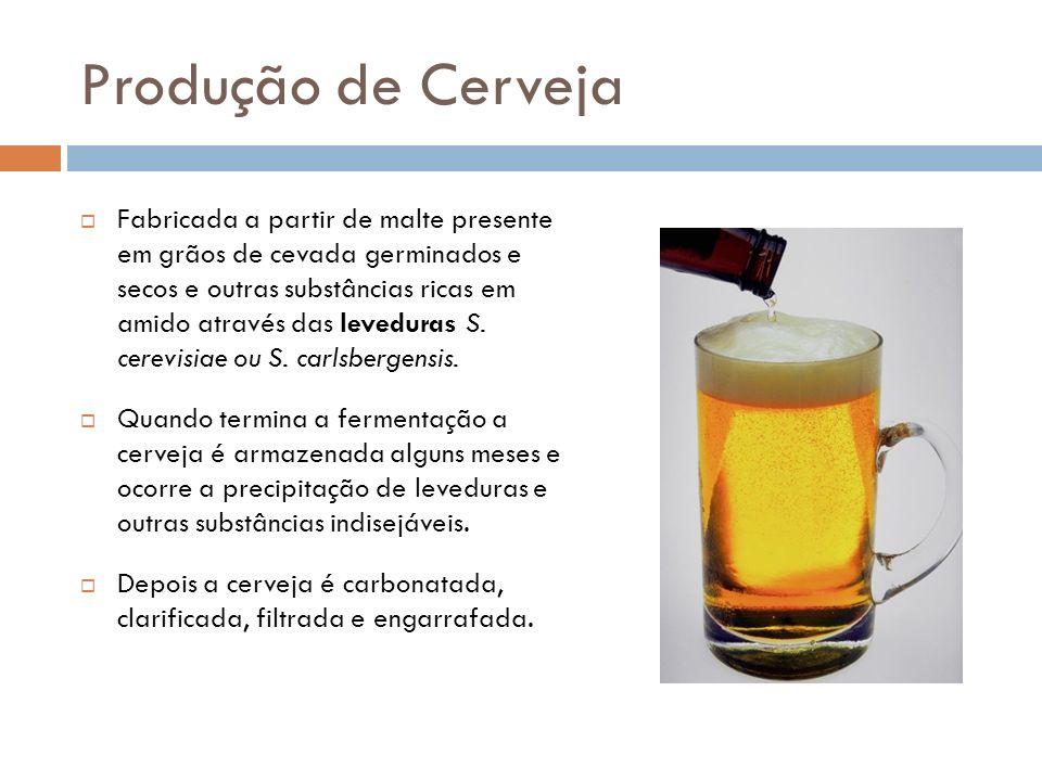 Produção de Cerveja Fabricada a partir de malte presente em grãos de cevada germinados e secos e outras substâncias ricas em amido através das levedur