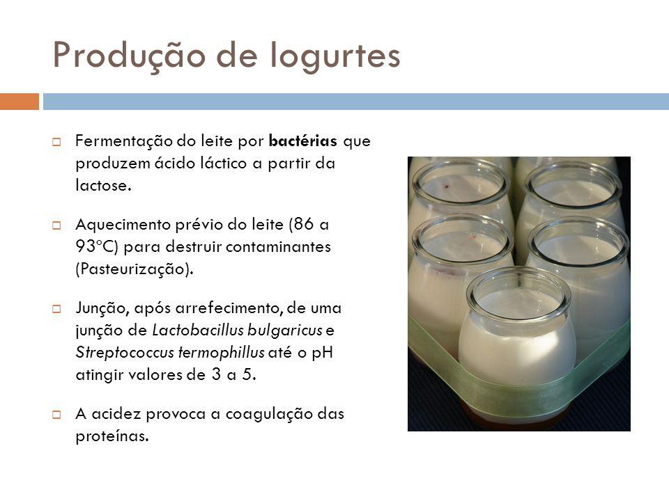 Produção de Iogurtes Fermentação do leite por bactérias que produzem ácido láctico a partir da lactose. Aquecimento prévio do leite (86 a 93ºC) para d