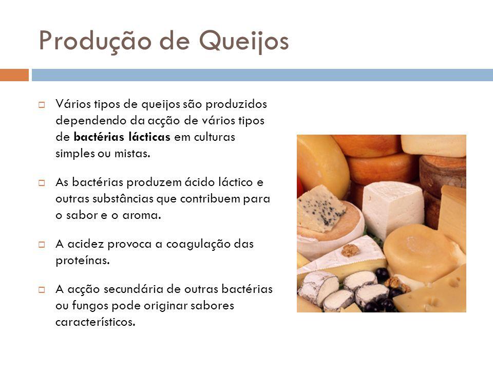 Produção de Queijos Vários tipos de queijos são produzidos dependendo da acção de vários tipos de bactérias lácticas em culturas simples ou mistas. As