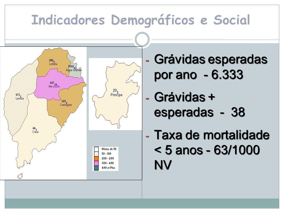 Indicadores Demográficos e Social - Grávidas esperadas por ano - 6.333 - Grávidas + esperadas - 38 - Taxa de mortalidade < 5 anos - 63/1000 NV