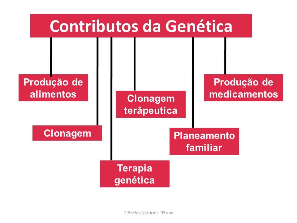 Contributos da Genética Ciências Naturais 9º ano Produção de alimentos Clonagem terâpeutica Clonagem Planeamento familiar Produção de medicamentos Ter