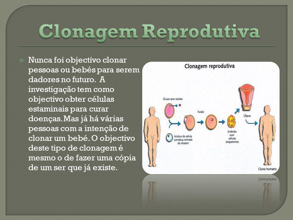 Nunca foi objectivo clonar pessoas ou bebés para serem dadores no futuro. A investigação tem como objectivo obter células estaminais para curar doença