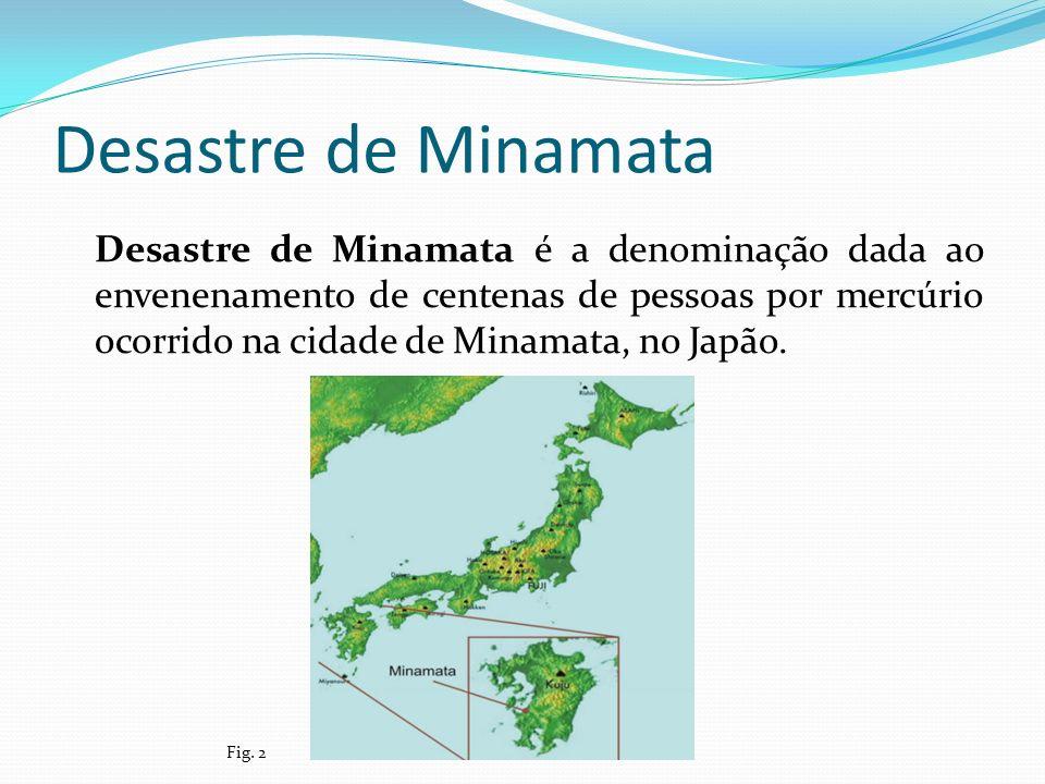Desastre de Minamata Desastre de Minamata é a denominação dada ao envenenamento de centenas de pessoas por mercúrio ocorrido na cidade de Minamata, no