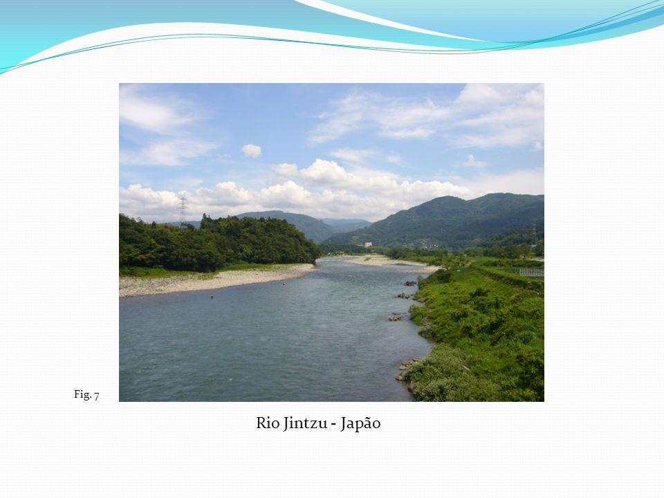 Rio Jintzu - Japão Fig. 7