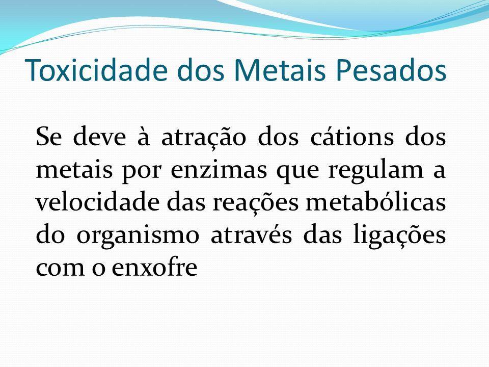 Toxicidade dos Metais Pesados Se deve à atração dos cátions dos metais por enzimas que regulam a velocidade das reações metabólicas do organismo atrav