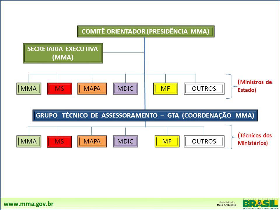 COMITÊ ORIENTADOR (PRESIDÊNCIA MMA) SECRETARIA EXECUTIVA (MMA) MMA MS MAPAMDICMF ( Ministros de Estado) OUTROS