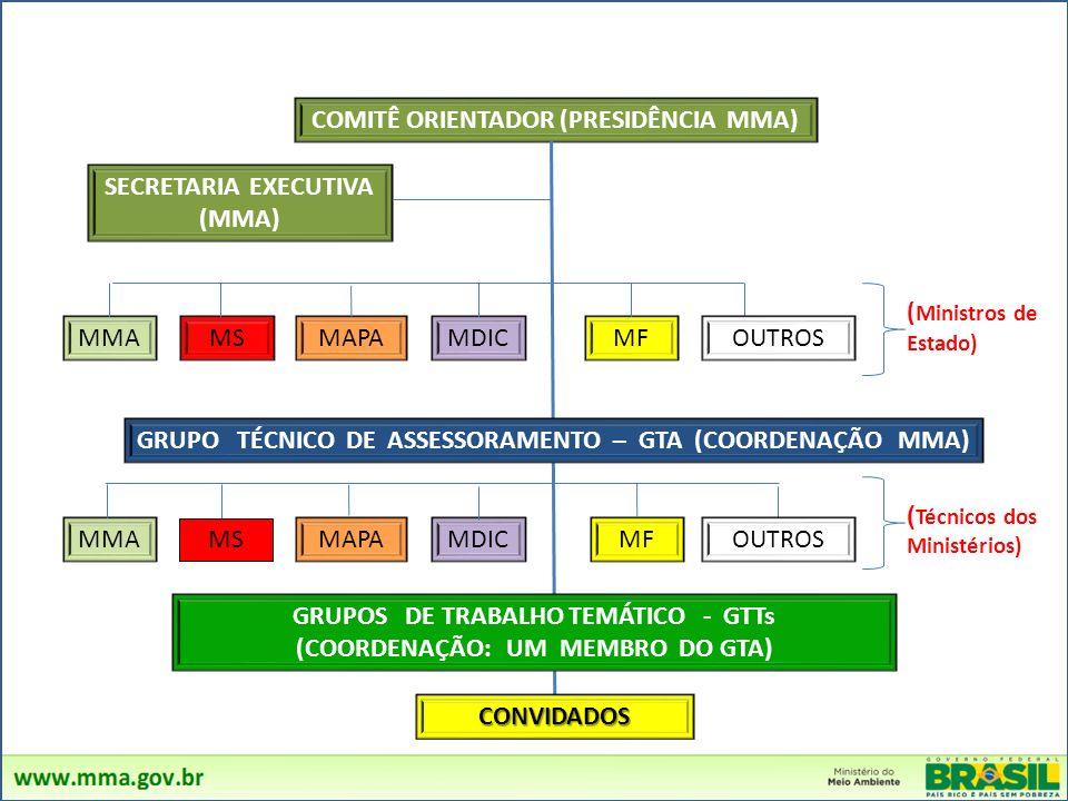 COMITÊ ORIENTADOR (PRESIDÊNCIA MMA) SECRETARIA EXECUTIVA (MMA) MMA MS MAPAMDICMF ( Ministros de Estado) MMA MS MAPAMDICMF ( Técnicos dos Ministérios)