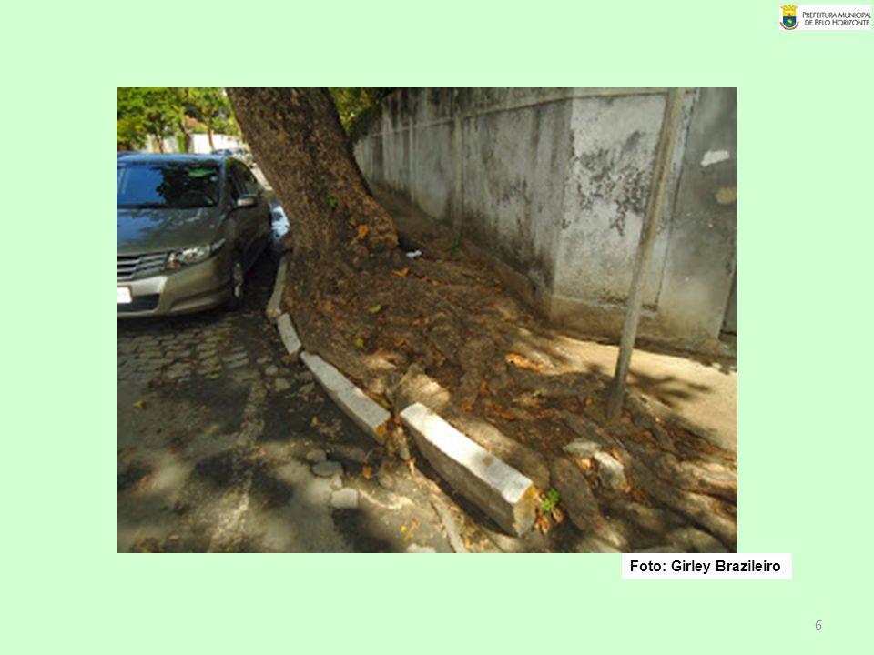27 § 2º – Nos casos de impedimento de plantio em passeios, poderá ser verificada a possibilidade do plantio ocorrer em faixa de estacionamento de veículos pertencente à via, mediante avaliação específica dos órgãos municipais competentes.