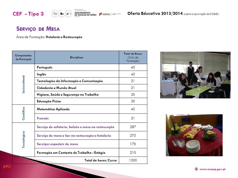 Componentes de Formação Disciplinas Total de Horas (Ciclo de Formação) Sociocultural Português45 Inglês45 Tecnologias da Informação e Comunicação21 Ci
