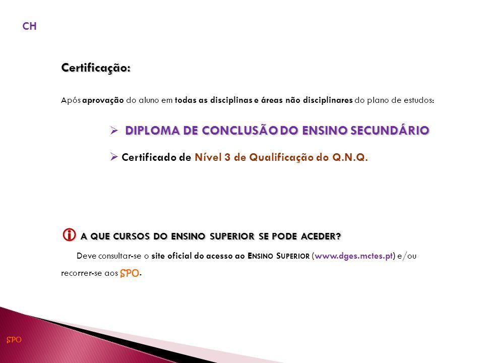 Certificação: Após aprovação do aluno em todas as disciplinas e áreas não disciplinares do plano de estudos: DIPLOMA DE CONCLUSÃO DO ENSINO SECUNDÁRIO Certificado de Nível 3 de Qualificação do Q.N.Q.