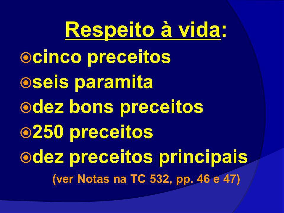 Respeito à vida: cinco preceitos seis paramita dez bons preceitos 250 preceitos dez preceitos principais (ver Notas na TC 532, pp. 46 e 47)