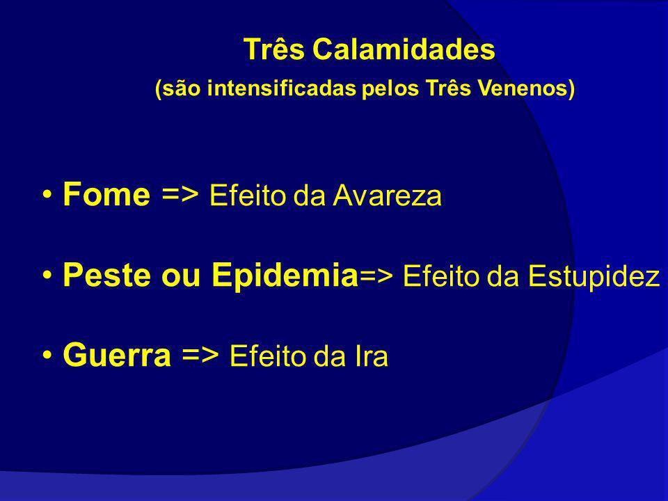 Três Calamidades (são intensificadas pelos Três Venenos) Fome => Efeito da Avareza Peste ou Epidemia => Efeito da Estupidez Guerra => Efeito da Ira